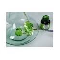 Colori Per Vetro E Ceramica